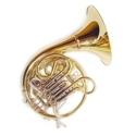 Horns, Flugelhorns, Basso tuba